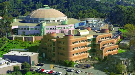 Nibbi Provides Constructability Solutions 